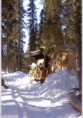 000 Remote, Slana, AK - USA (photo 3)