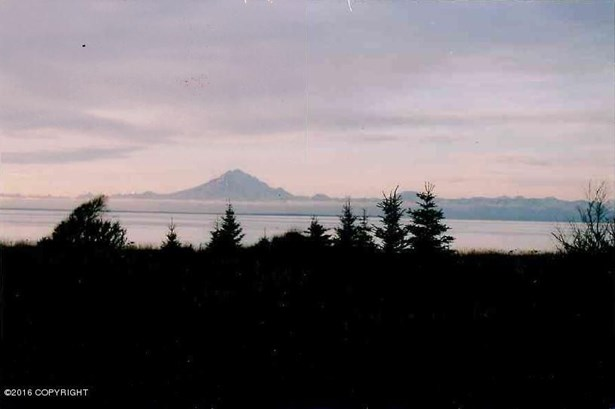 37401 Cannery Road, Kenai, AK - USA (photo 2)