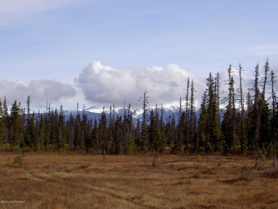 Asls 91-13 Caribou Lake, Ninilchik, AK - USA (photo 1)