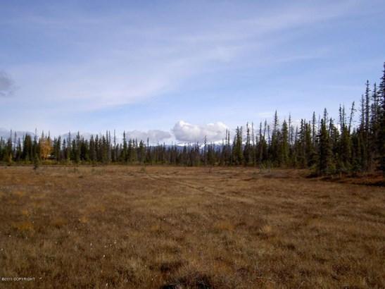 Asls 91-13 Caribou Lake, Ninilchik, AK - USA (photo 2)
