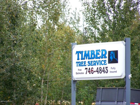 11709 E Palmer-wasilla Highway, Palmer, AK - USA (photo 3)
