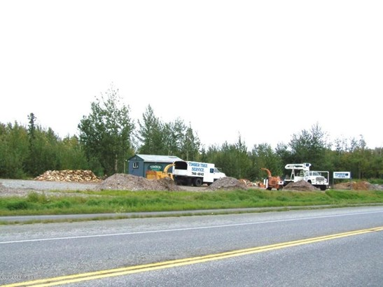 11709 E Palmer-wasilla Highway, Palmer, AK - USA (photo 5)