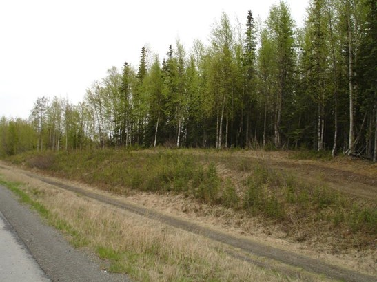 37135 Sterling Highway, Sterling, AK - USA (photo 3)