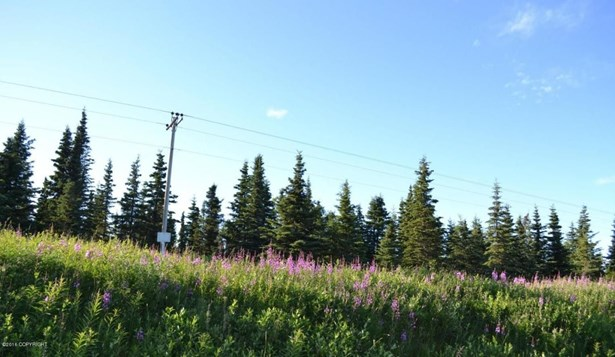 65240 Sterling Highway, Clam Gulch, AK - USA (photo 3)