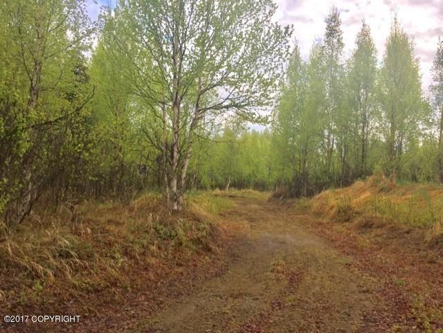 48601 Linger Lane, Soldotna, AK - USA (photo 1)