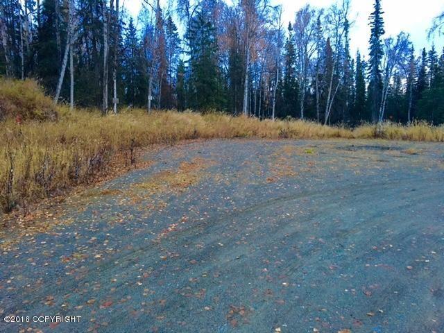 L4 Eldon Circle, Soldotna, AK - USA (photo 4)