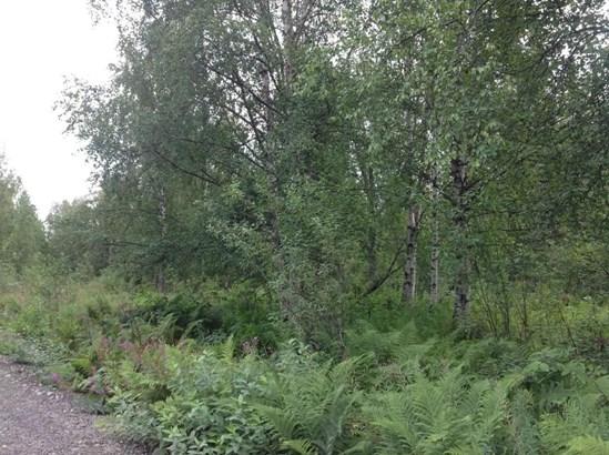 9738 E Susitna Road, Trapper Creek, AK - USA (photo 3)