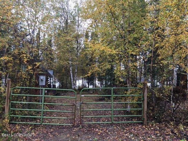 13369 N Willow Drive, Willow, AK - USA (photo 1)