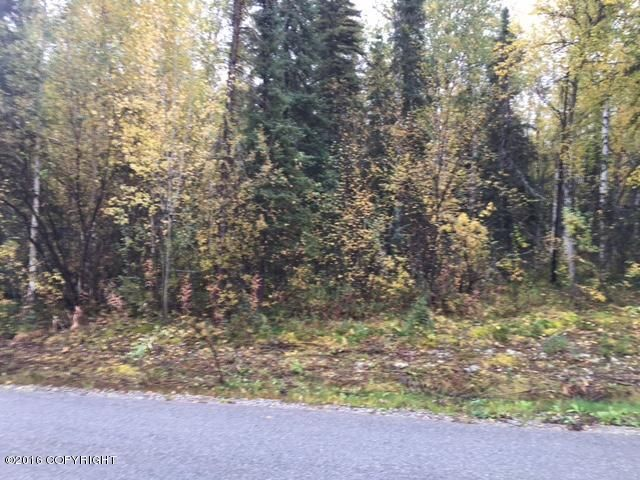 13369 N Willow Drive, Willow, AK - USA (photo 2)