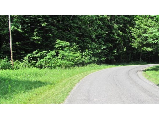 Spruce Hollow Road, New Salem, PA - USA (photo 1)