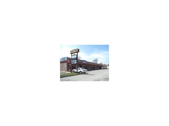 1760 Belmont Ave, Youngstown, OH - USA (photo 1)