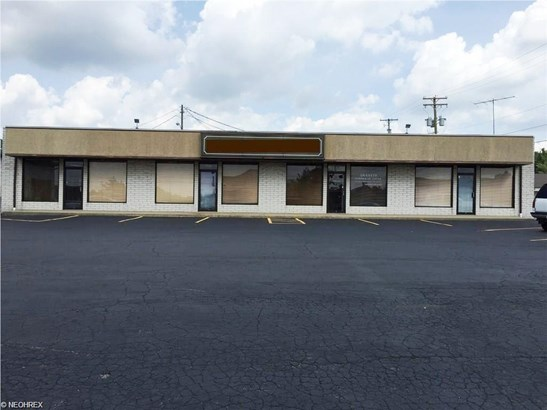 7291 West Blvd, Youngstown, OH - USA (photo 1)