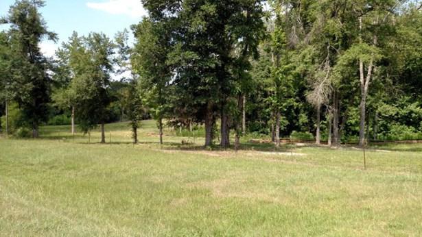 2428 Highway 25, Keysville, GA - USA (photo 2)