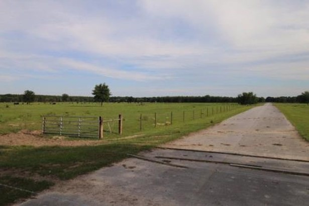 Agricultural - Trenton, FL (photo 1)