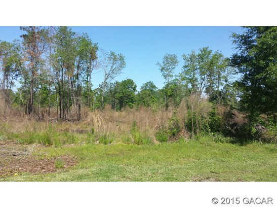 Vacant Land - Starke, FL (photo 1)