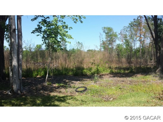 Vacant Land - Starke, FL (photo 5)