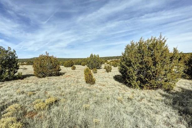 Sale - Edgewood, NM (photo 3)