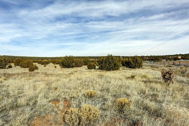 Sale - Edgewood, NM (photo 5)