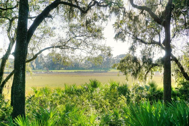 Wooded - FERNANDINA BEACH, FL (photo 1)