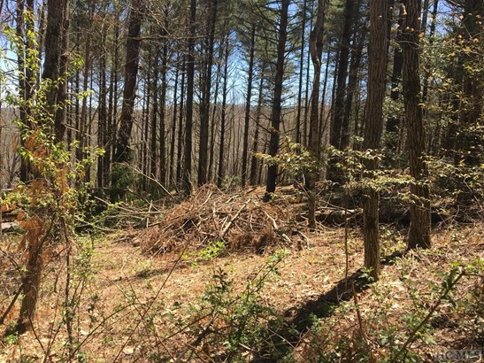 Land - Glenville, NC (photo 5)