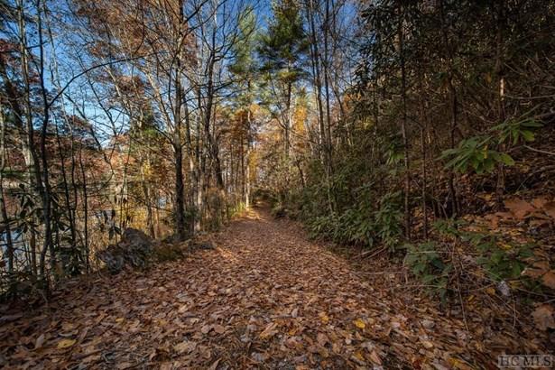 Land - Cullowhee, NC (photo 2)