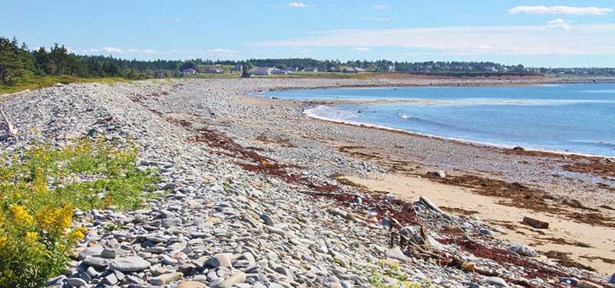 1358 Highway 1, Church Point, NS - CAN (photo 3)