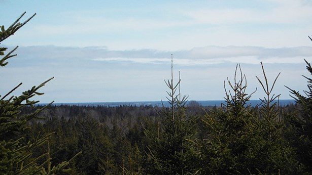 Lot J5 Flat Hill Road, Broad Cove, NS - CAN (photo 2)