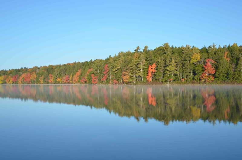 Lot Porcupine Lake, Aldersville, NS - CAN (photo 2)