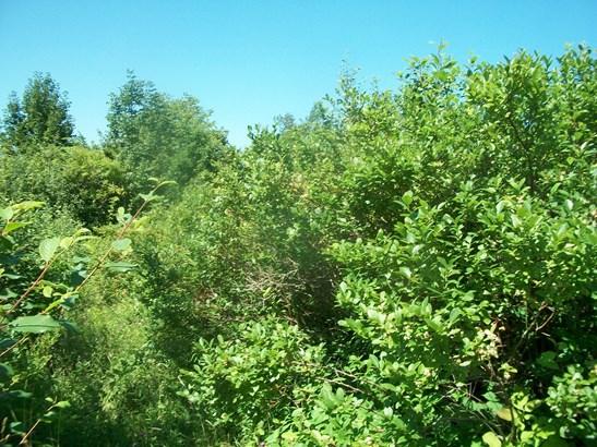 Lot Burns Hill Road, Deep Brook, NS - CAN (photo 3)