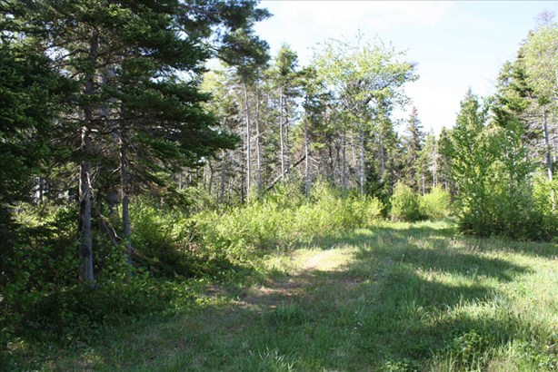 Lot 2 Island Road Extension, Malagash, NS - CAN (photo 4)