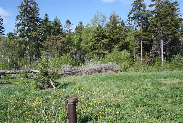 Lot 9 Island Road Extension, Malagash, NS - CAN (photo 4)