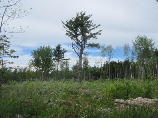 Lot Clementsvale Road, Princedale, NS - CAN (photo 5)