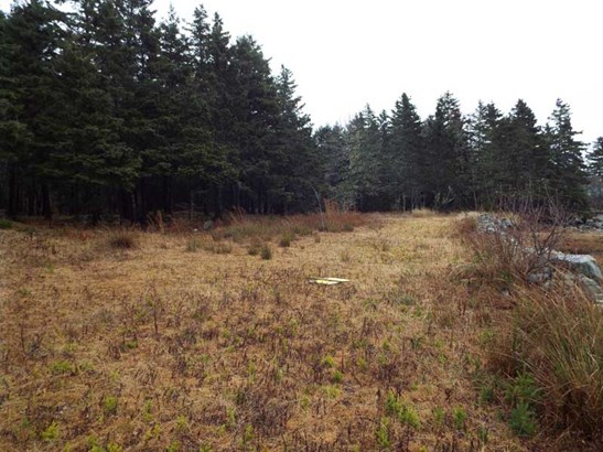 Lot Highway 331, Vogler's Cove, NS - CAN (photo 2)