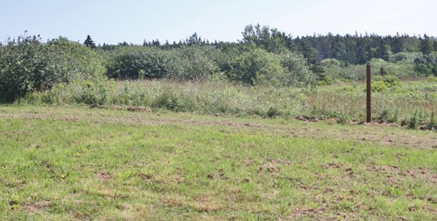 1336 Route 1, Church Point, NS - CAN (photo 4)