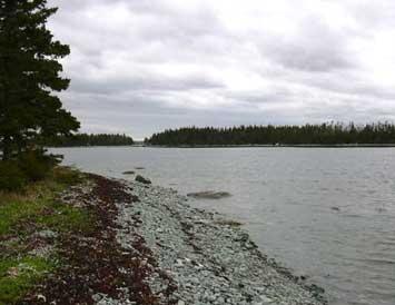 Land Calf Island, Ecum Secum, NS - CAN (photo 2)
