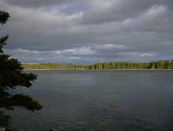 Land Calf Island, Ecum Secum, NS - CAN (photo 5)