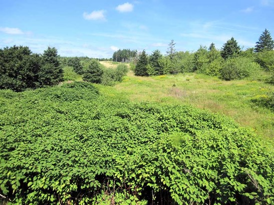 605 Melrose Hill Road, Melrose, NS - CAN (photo 4)