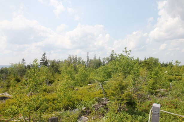 Lot 8 A Highway 3, Deep Cove, NS - CAN (photo 4)