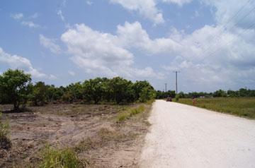 Burrell Boom Village, Belize District, Belize, Burrell Boom Village - BLZ (photo 4)