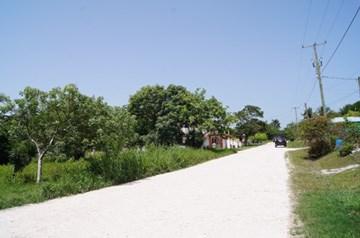 Beetle Juice Street, San Ignacio - BLZ (photo 3)
