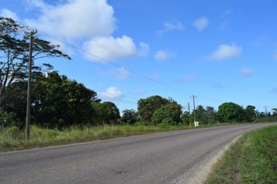 Mile 9.75 Hummingbird Highway, Hope Creek - BLZ (photo 1)