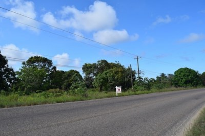 Mile 9.75 Hummingbird Highway, Hope Creek - BLZ (photo 3)
