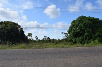 Mile 9.75 Hummingbird Highway, Hope Creek - BLZ (photo 4)