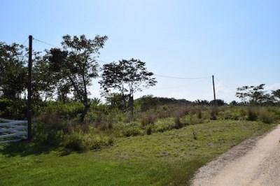 Mountain View Area, Belmopan, Cayo District, Beliz, Belmopan - BLZ (photo 1)