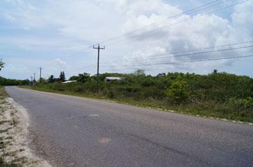 Mile 10 Philip Goldson Highway (northern Highway), Ladyville - BLZ (photo 3)