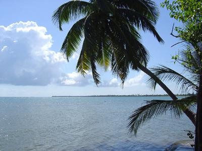 South Of Monkey River-north Of Punta Negra, Punta Negra - BLZ (photo 2)