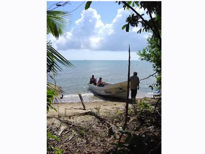 South Of Monkey River-north Of Punta Negra, Punta Negra - BLZ (photo 5)