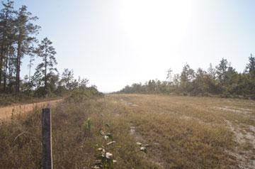Little Vaqueros Enclave, Mountain Pine Ridge - BLZ (photo 5)