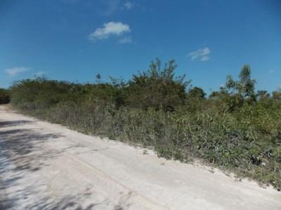 Mayan Sands, Corozal Town - BLZ (photo 3)