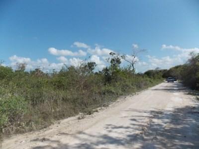 Mayan Sands, Corozal Town - BLZ (photo 5)